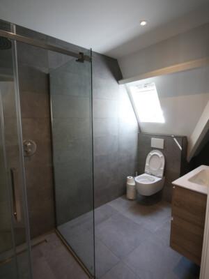 badkamer met douche, wc en wastafel